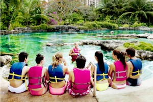 泳げる水族館 (c)PICグアム