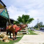 グアム南部をレンタカーでドライブ!おすすめコースと観光スポット
